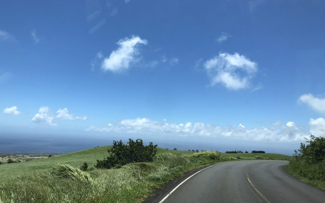 Writing & Grammar Level 4 student blog : Transportation in Hilo, Big Island