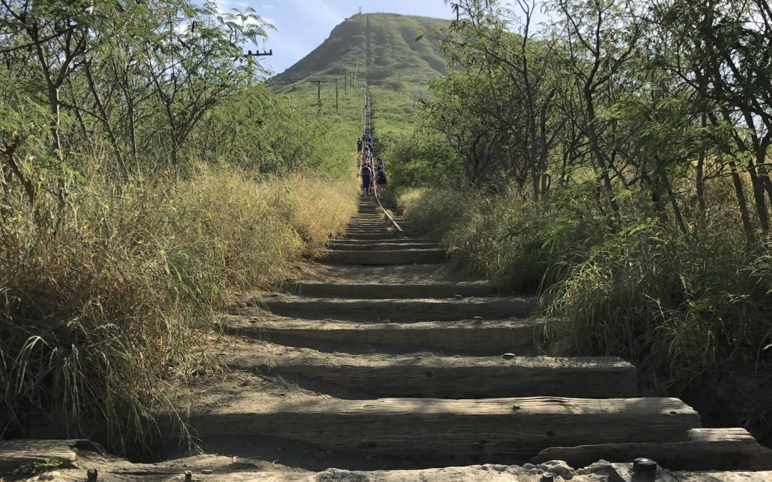 Writing & Grammar Level 4 student blog: Hiking on Koko Head