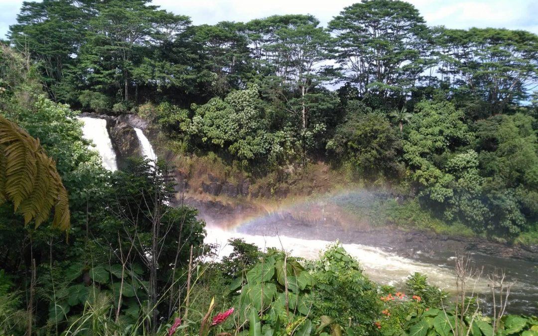 IEP生の英文ブログ:ハワイでお気に入りの場所